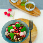 Salade de lentilles radis betteraves grenade